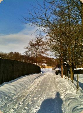Bellingham at minus 10