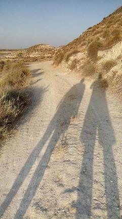 selfie scargills